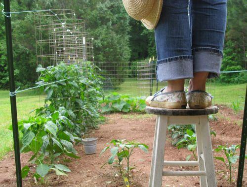 Garden bench monday